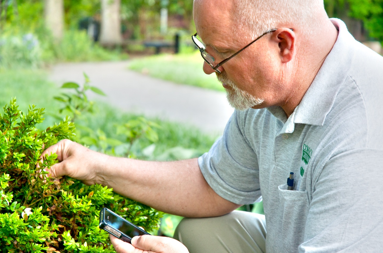 Photo of nursery manager John Watson using IPMPro, a pest management app recently released by a team of researchers from a several different universities.