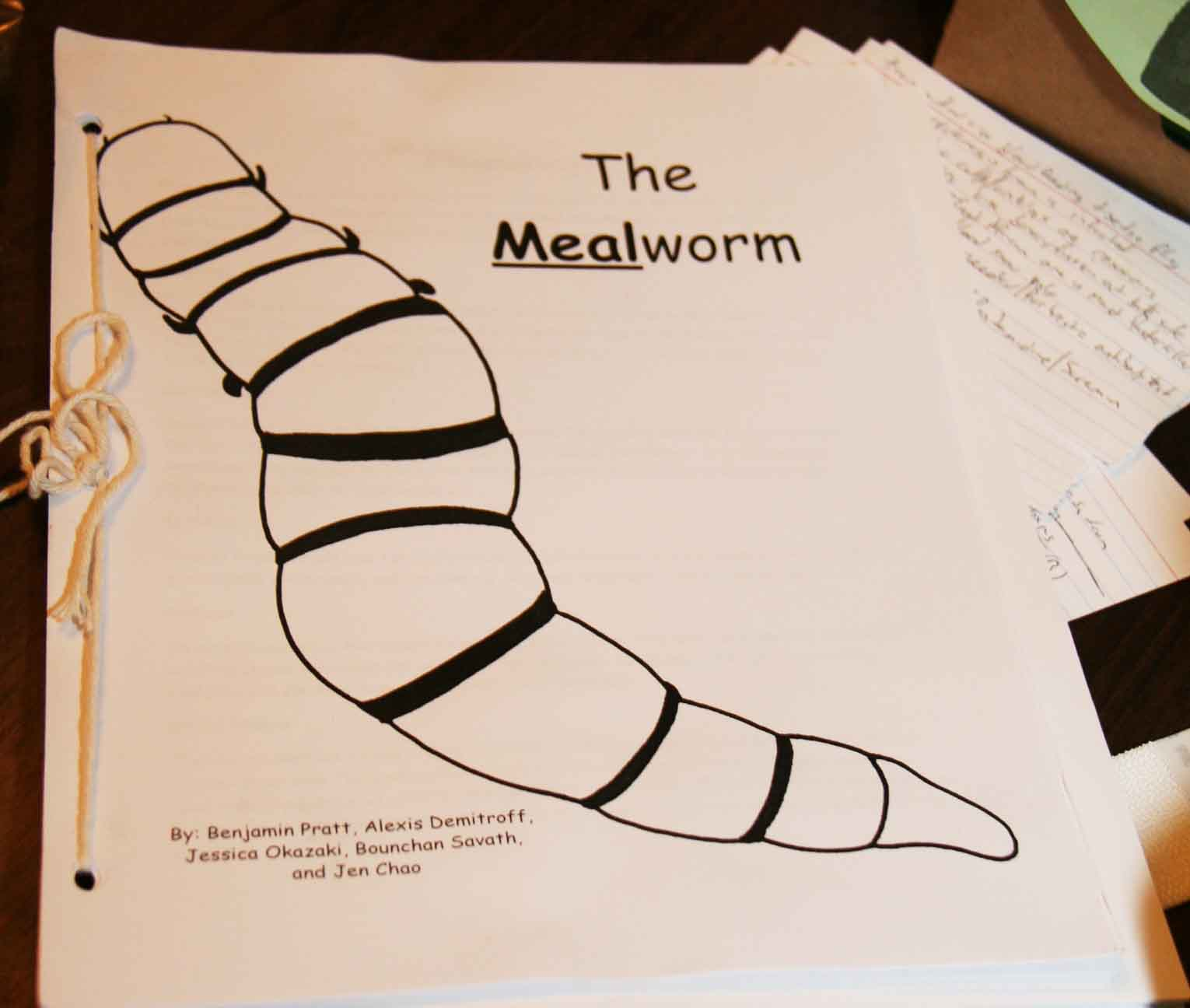 Harmon Johar, a junior studying entomology at the UGA College of Agricultural and Environmental Sciences founded World Entomophagy — an international company that supplies edible insects to chefs. They also distribute recipes like the ones in this Meal Worm cookbook.