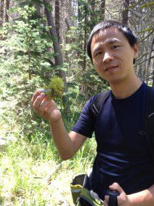 Portrait of Li Yang